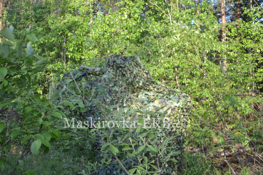 Сеть лес